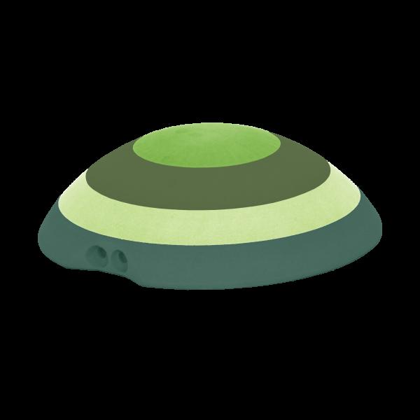 Turtle_M_Prod_multi_green png